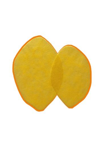 Citroen oranje